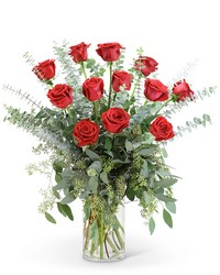 Red Roses with Eucalyptus Foliage (12) from Eagledale Florist in Indianapolis, IN