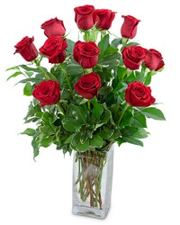 Classic Dozen Red Roses from Eagledale Florist in Indianapolis, IN