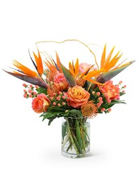 Spirit of the Tropics from Eagledale Florist in Indianapolis, IN