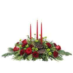 Carolina Carols from Eagledale Florist in Indianapolis, IN